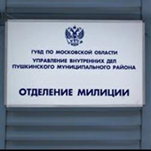 Отделения полиции Сковородино